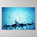 Gaviotas de arenques en trayectoria del jet impresiones