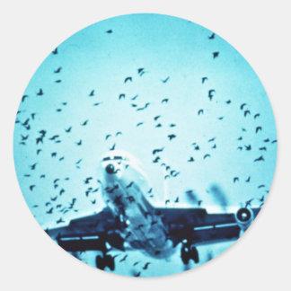 Gaviotas de arenques en trayectoria del jet pegatinas redondas