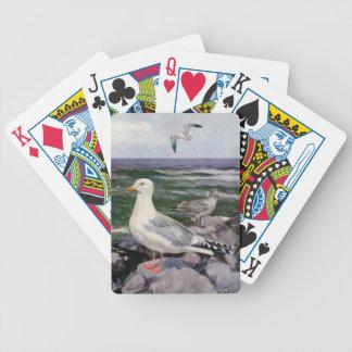 Gaviotas de arenques en una línea de la playa roco baraja de cartas