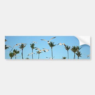 Gaviotas de Bahamas que vuelan sobre los cielos az Etiqueta De Parachoque