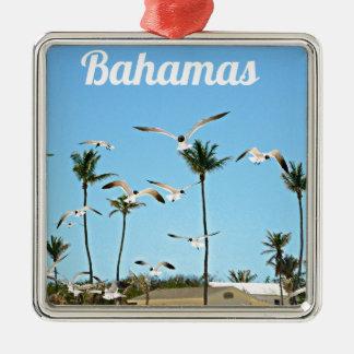 Gaviotas de Bahamas que vuelan sobre los cielos az Ornamentos De Reyes Magos