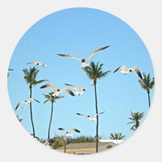 Gaviotas de Bahamas que vuelan sobre los cielos Pegatinas Redondas