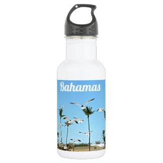 Gaviotas de Bahamas que vuelan sobre los cielos