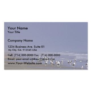 Gaviotas de espalda negra en la línea de la playa plantilla de tarjeta de visita