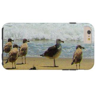 GAVIOTAS DE LA COSTA COLLECTION-SURFSIDE DE FUNDA PARA iPhone 6 PLUS TOUGH