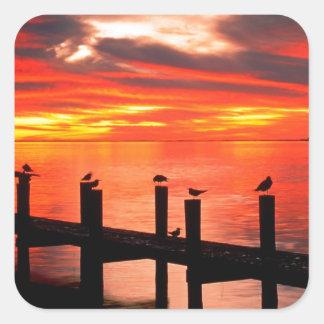 Gaviotas de la puesta del sol en fuerte Myers la Calcomanía Cuadradas Personalizada