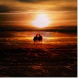 Gaviotas de la puesta del sol - pájaros del amor e escultura fotográfica