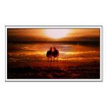 Gaviotas de la puesta del sol - pájaros del amor e tarjetas personales