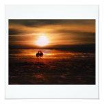 Gaviotas de la puesta del sol - pájaros del amor invitación 13,3 cm x 13,3cm