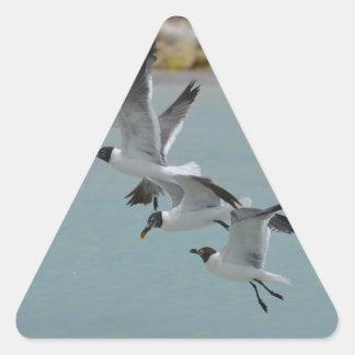 Gaviotas de risa que vuelan calcomania de triangulo personalizadas