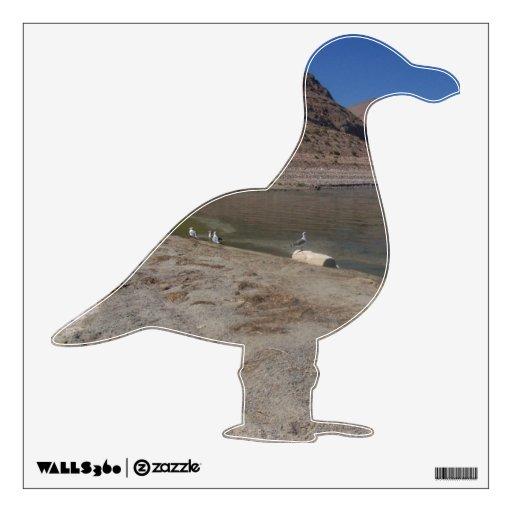 Gaviotas del lago walker