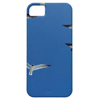 gaviotas en el cielo iPhone 5 fundas