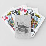 Gaviotas en la arpillera blanca barajas de cartas