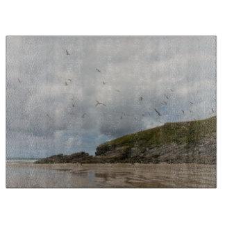 Gaviotas en la playa Newquay Cornualles de Porth Tablas De Cortar
