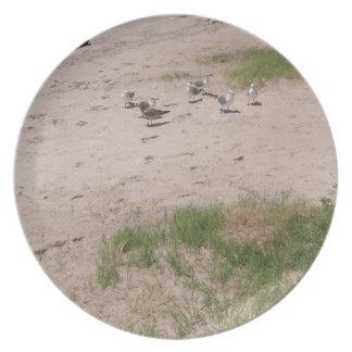 Gaviotas en la playa plato para fiesta