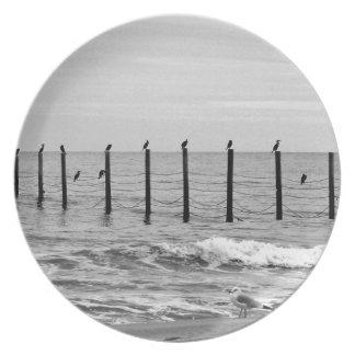 gaviotas en la playa plato de cena