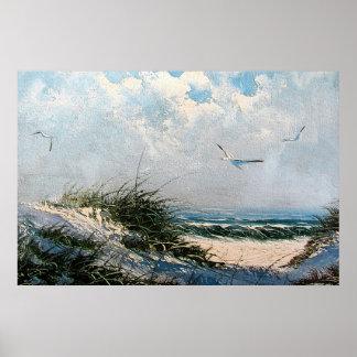 Gaviotas en la playa póster