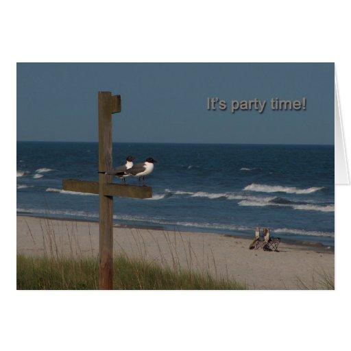 gaviotas en la tarjeta de cumpleaños de la playa