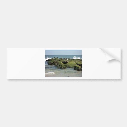 Gaviotas en rocas pegatina de parachoque