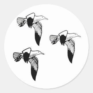 Gaviotas (gaviotas de arenques) etiqueta redonda