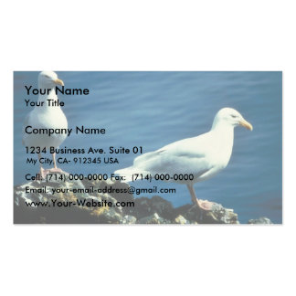Gaviotas glaucas tarjetas personales
