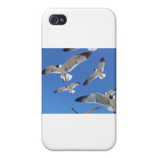gaviotas iPhone 4/4S carcasa