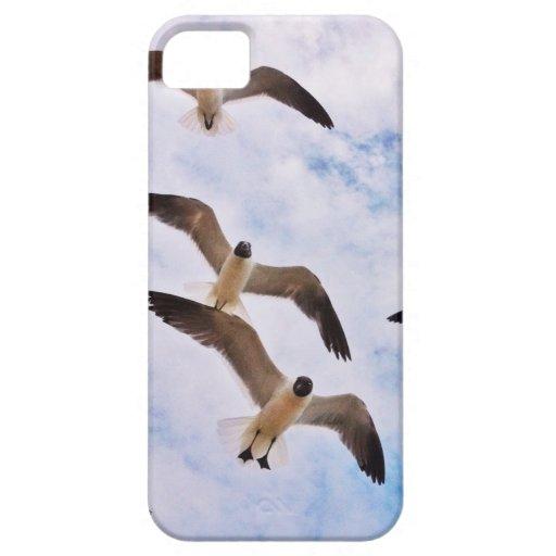 Gaviotas iPhone 5 Case-Mate Carcasa