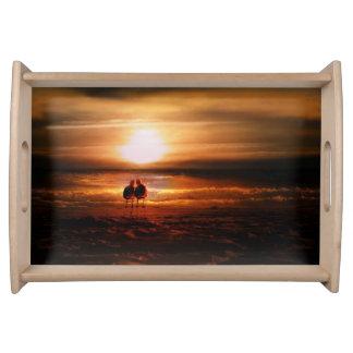 Gaviotas - Lovebirds en la puesta del sol Bandejas
