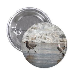 Gaviotas, pequeño botón pin redondo de 1 pulgada