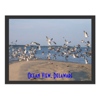Gaviotas postal, vista al mar, Delaware