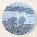 Gaviotas que se besan en la foto de la playa posavasos manualidades