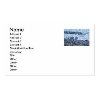 Gaviotas que se besan en la foto de la playa tarjetas de visita