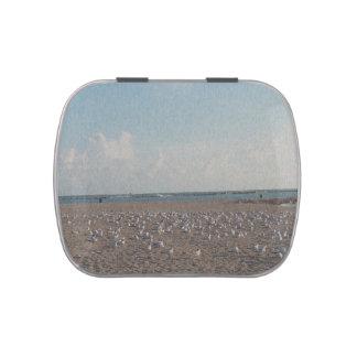 gaviotas que se colocan en mirada fibered playa frascos de dulces