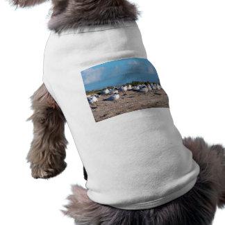 Gaviotas que se colocan en nivel del ojo de la camisetas de perrito