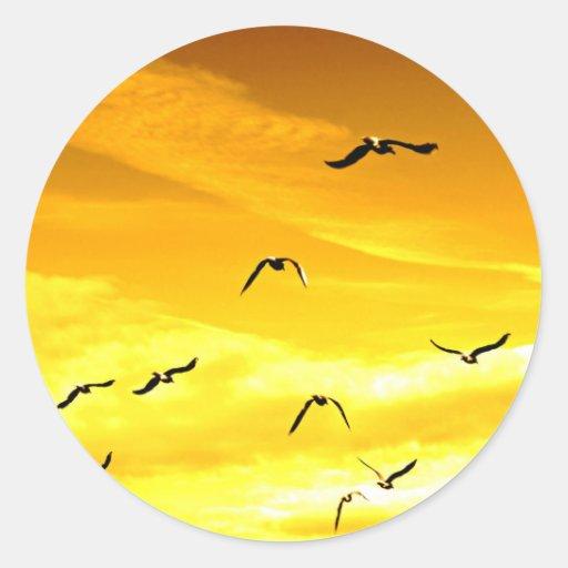 gaviotas que vuelan al éxito pegatina redonda