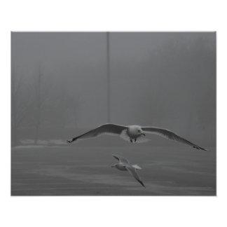 """Gaviotas que vuelan en el día de niebla 20"""""""" arte con fotos"""