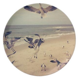 Gaviotas que vuelan en la playa plato