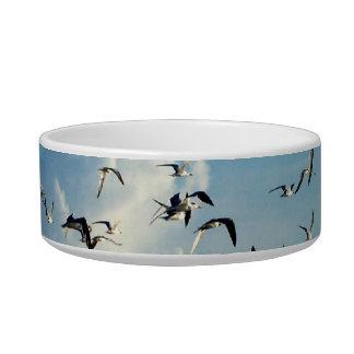 gaviotas que vuelan sobre la playa tazones para agua para gatos
