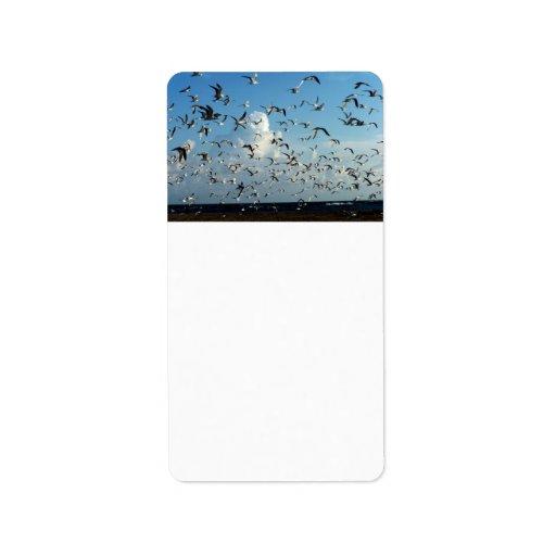 gaviotas que vuelan sobre la playa etiquetas de dirección
