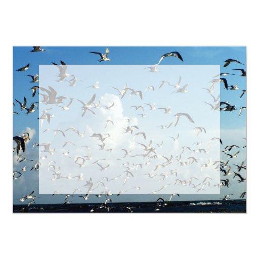 gaviotas que vuelan sobre la playa comunicados personales