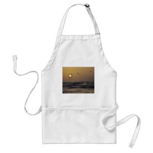Gaviotas y puesta del sol en la costa de Tejas Delantal
