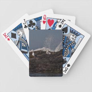 Gaviotas y resaca baraja cartas de poker