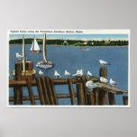 Gaviotas y veleros a lo largo de la costa posters