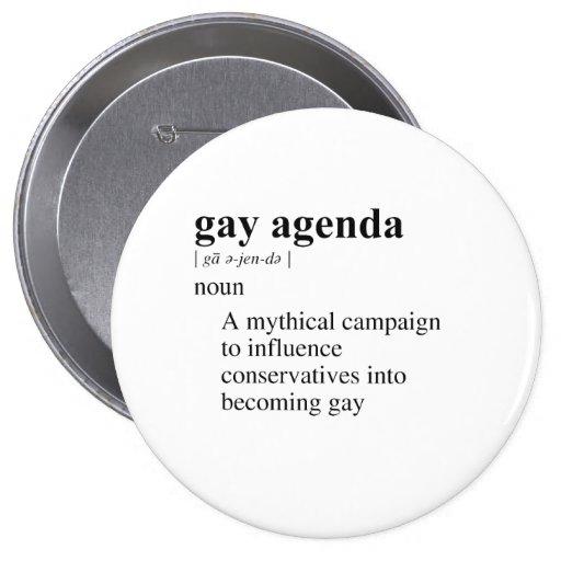 GAY AGENDA PIN