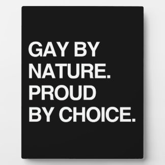 GAY BY NATURE. PROUD BY CHOICE DISPLAY PLAQUE
