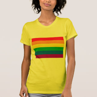 GAY FLAG ORIGINAL T-SHIRTS