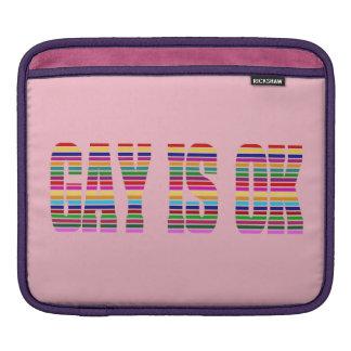 Gay K Sleeve For iPads