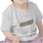 Gay Marriage Rainbow T-shirts