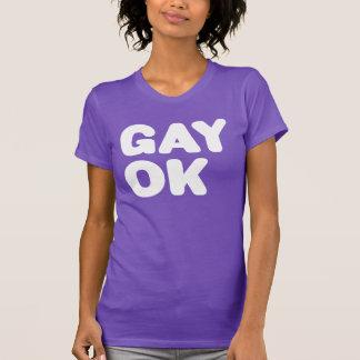 GAY OK Big Type Logo LGBT White Purple Spirit Day T-Shirt