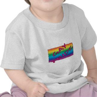 Gay Pride Flag Tshirts
